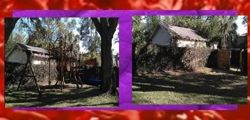 Junk Hauling In Land O Lakes And New Port Richey Florida